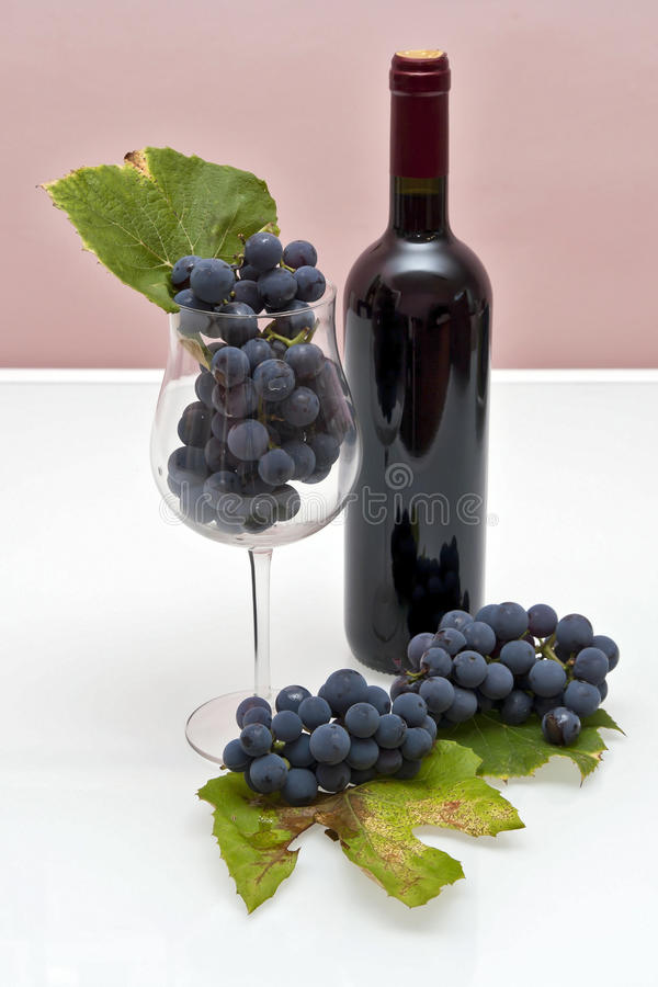 Wine and grapes. Bottle of red wine, and glass filled with grapes stock photos