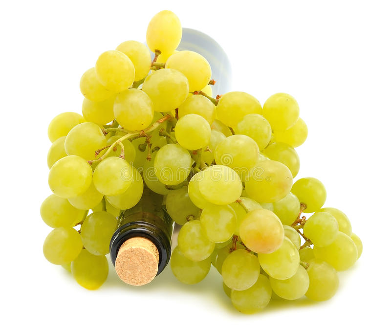 Download Wine and Grapes stock image. Image of crop, juicy, grapes - 25884069