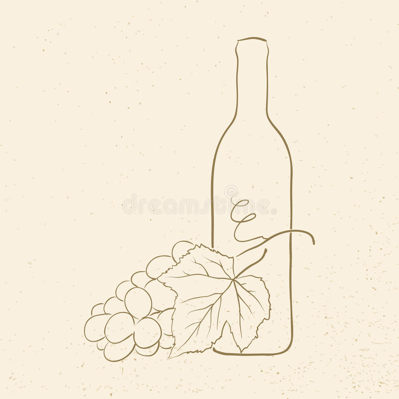 Wine and grapes vector illustration