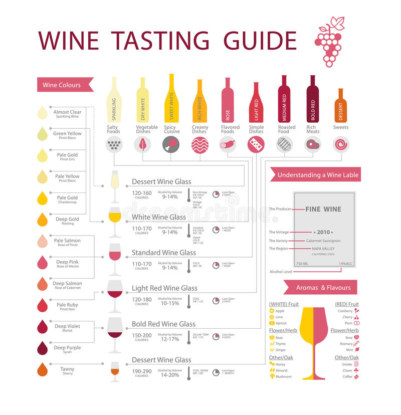Wine guide royalty free stock image