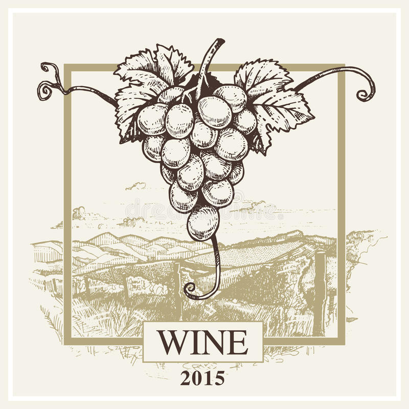 Wine label vector grape and landscape logo for winery. Vintage hand drawing ink EPS10 vector illustration