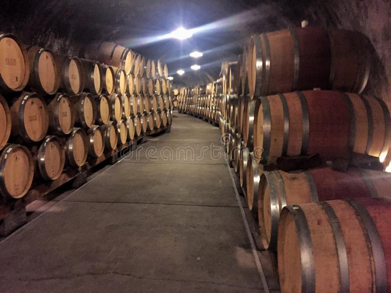 Wine Much?. Inside a wine cave in Sonoma, CA where the barrels of wine seem to never end royalty free stock images