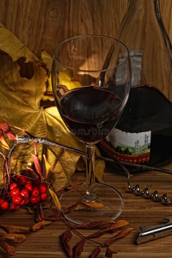Wine no vidro e no frasco com folhas amarelas fotos de stock royalty free