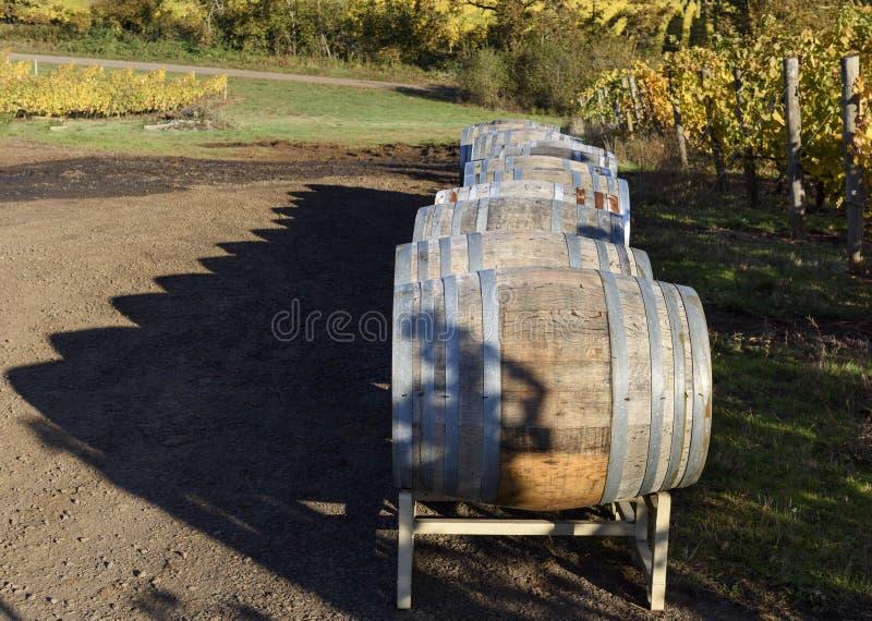 Vineyard Oak Barrels, Mid-Willamette Valley, Marion County, West. Wine Oak Barrels, Mid-Willamette Valley stock photos