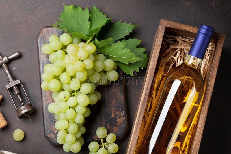 Wine och druvor royaltyfria foton