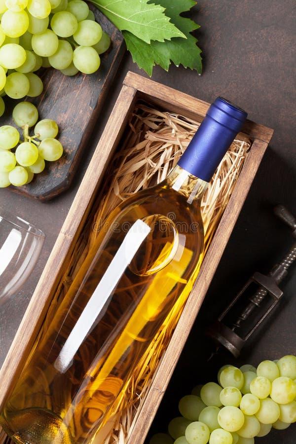Wine och druvor royaltyfri bild