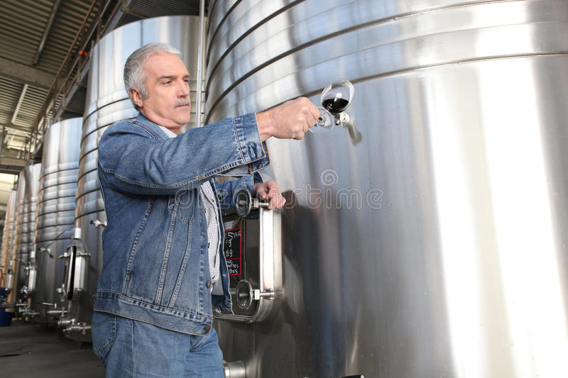 Wine producer stood by tanks. Wine producer in front of wine tanks stock photos