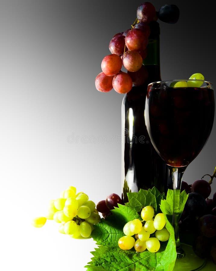 Free Wine Red Stock Photos - 20064693