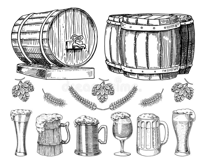 Wine or rum, beer classical wooden barrels for rural landscape. Barley and wheat, malt and hops. engraved in ink hand vector illustration