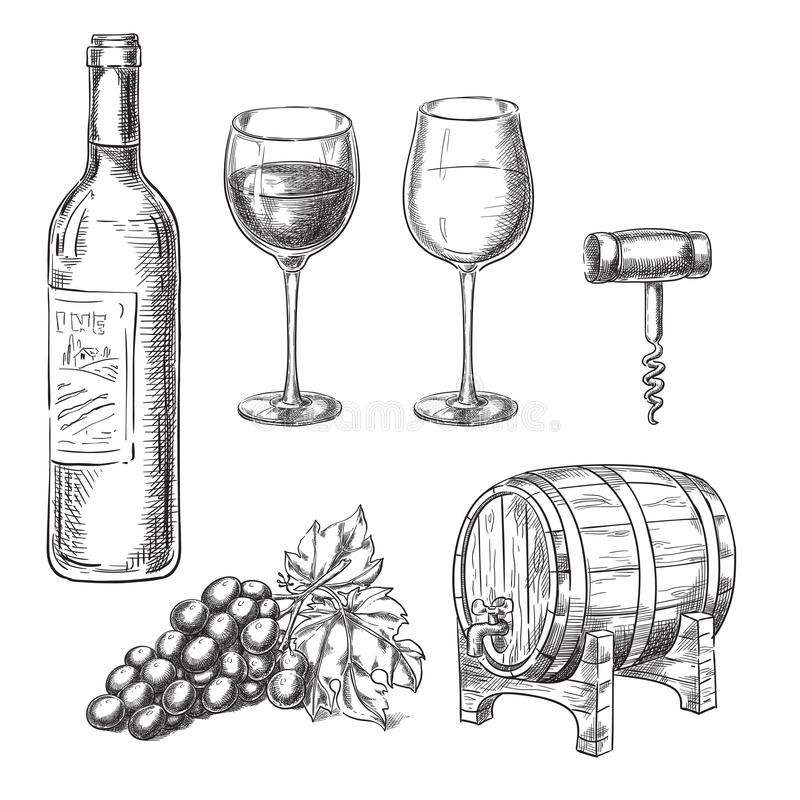 Wine sketch vector illustration. Bottle, glasses, grape vine, barrel, corkscrew, hand drawn isolated design elements. stock illustration