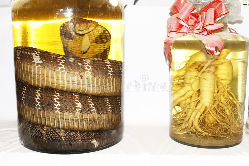 Wine and snake stock photo