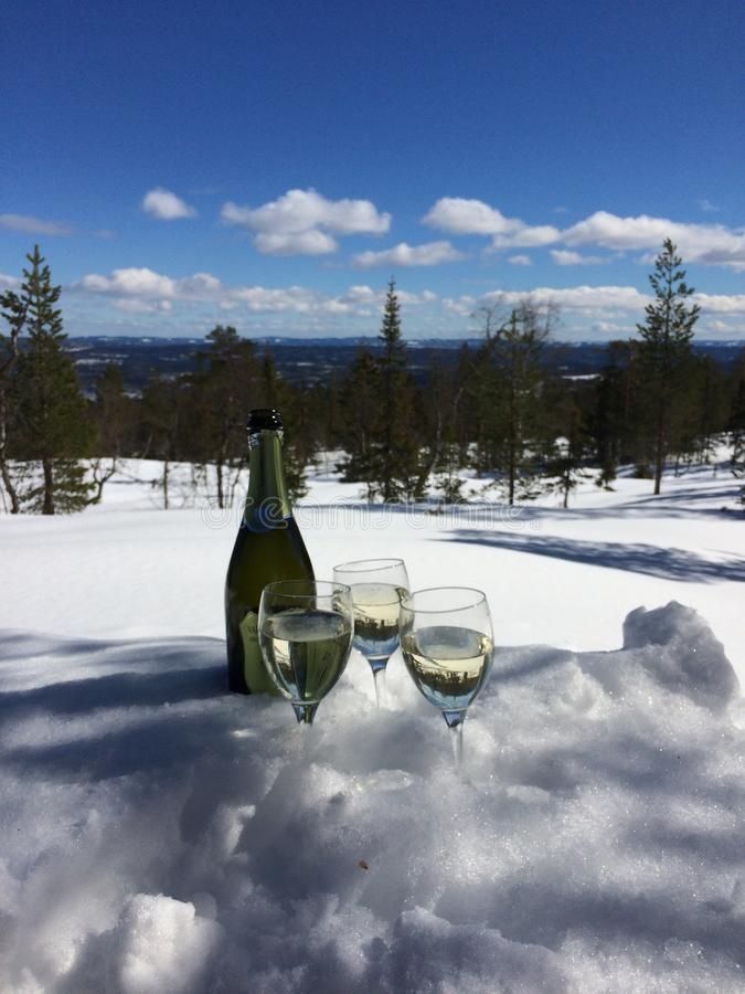 Wine in the snow royalty free stock photography