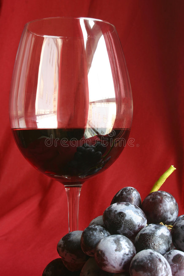 Wine Still Life royalty free stock image