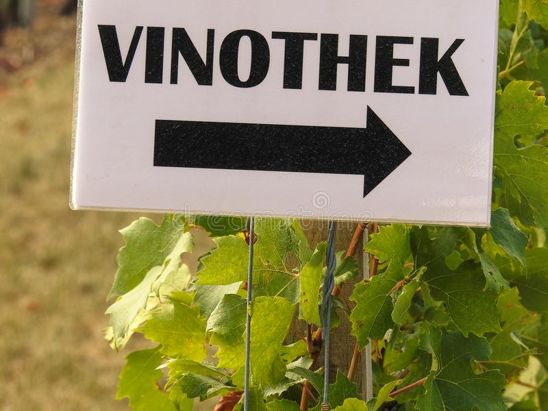 WINE STORE direction sign in German language. In the vineyard stock photography