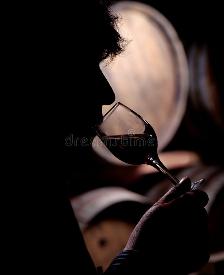 Wine taster royalty free stock images