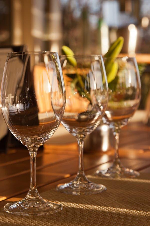The Wine Tasting royalty free stock photos
