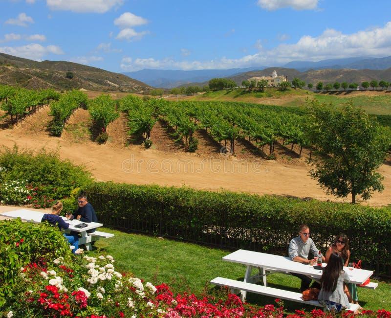 Wine Tasting, California royalty free stock photos