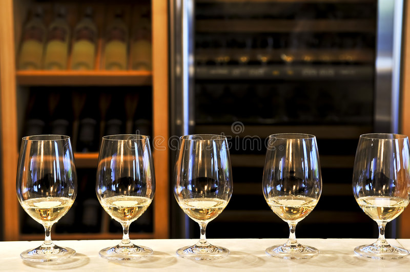 Wine tasting glasses royalty free stock photo