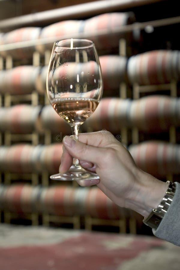 Wine testing stock photography