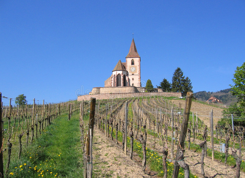 Wine trail french vineyard old church alsace france stock images