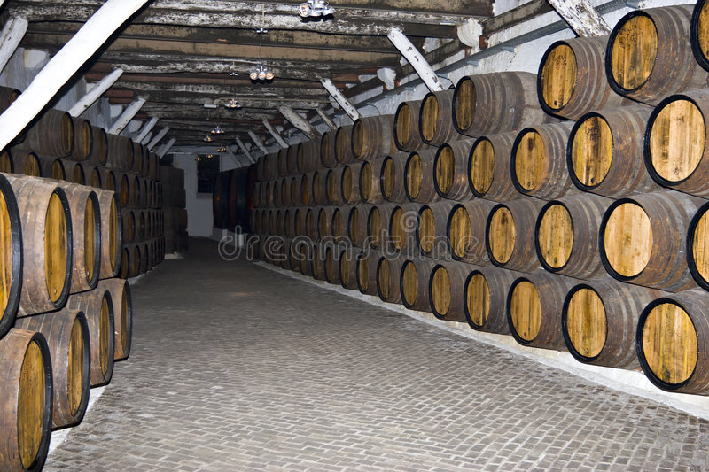 Wine tuns. Rows of tuns in wine cellar royalty free stock photo