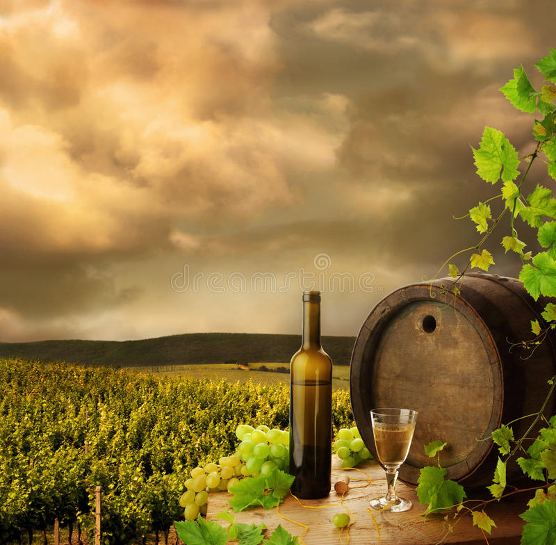 Download Wine and vineyard stock photo. Image of glasses, background - 16655188