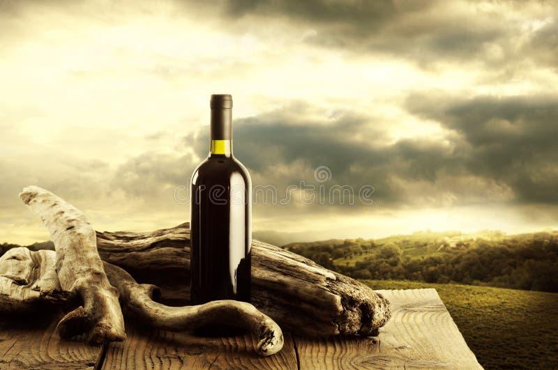 Wine And Vineyard Stock Image