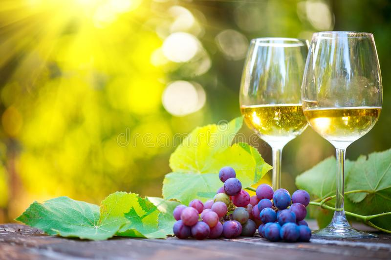 Wine. White Wine in wineglass. Romantic Dinner Outdoor. Wine tasting. Couple wine glasses and grapes close-up. Outdoors. Winemaking royalty free stock image
