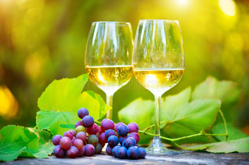 Wine. White Wine in wineglass. Romantic Dinner Outdoor. Wine tasting. Couple wine glasses and grapes close-up. Outdoors. Winemaking stock photography
