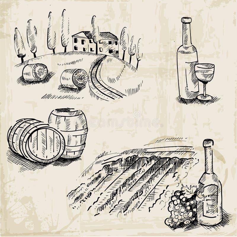 Wine, Winemaking and Vineyard. Hand drawn illustration - in stock illustration