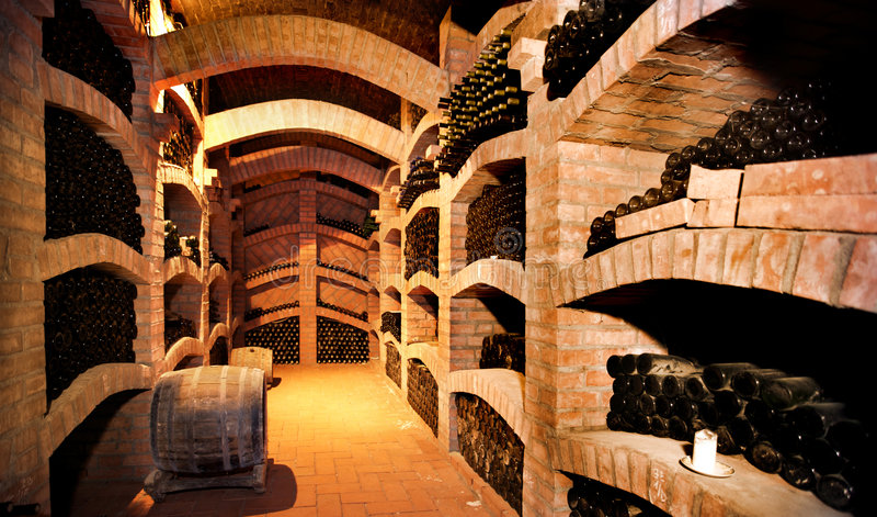 Winecellar stockfoto