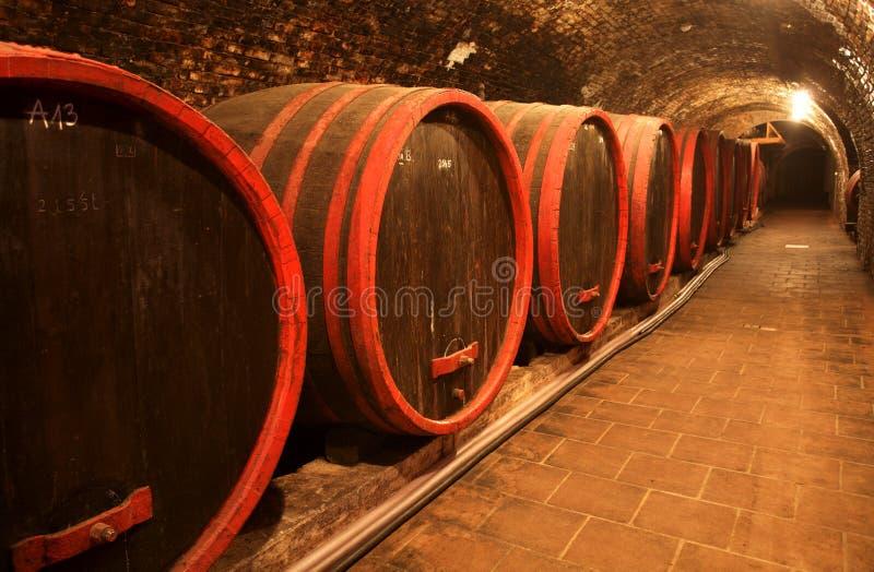 Winecellar fotografia de stock royalty free