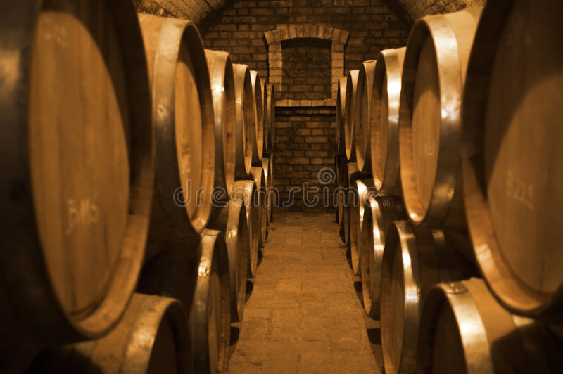 Winecellar photo stock