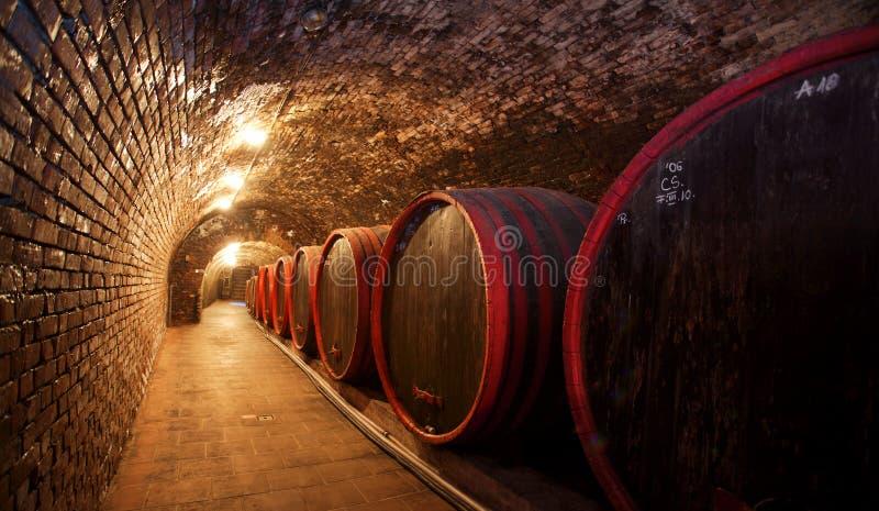 winecellar 免版税库存图片