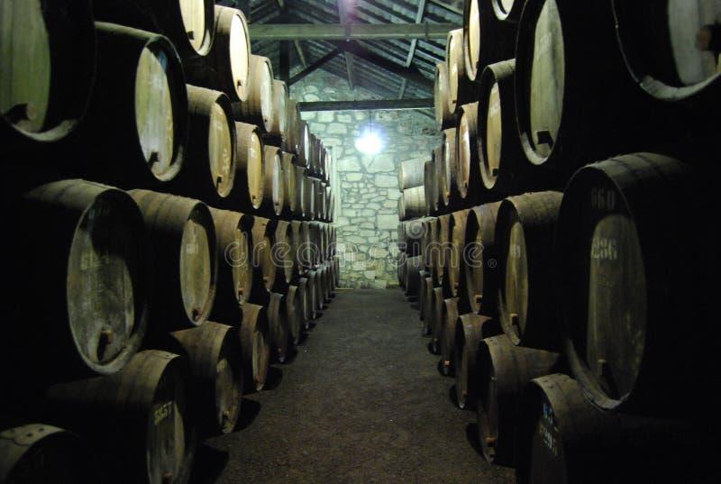 Winecellar Porto image stock