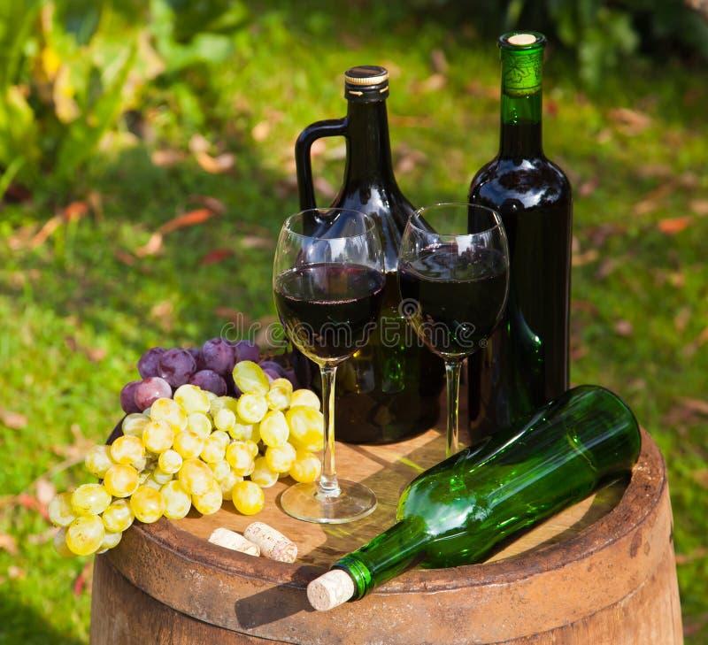 Wineflaskor och druvor royaltyfri bild