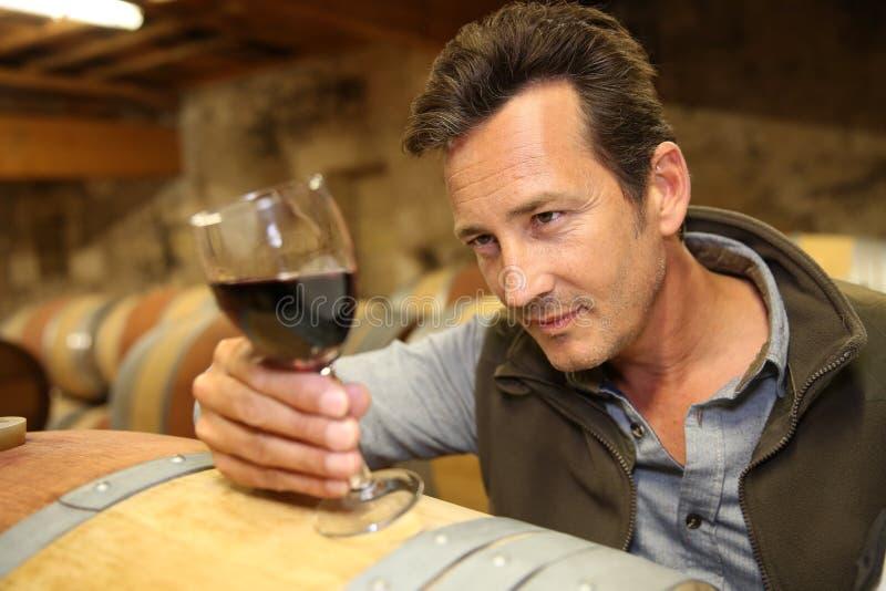 Winemaker смотря цвет вина стоковое изображение rf