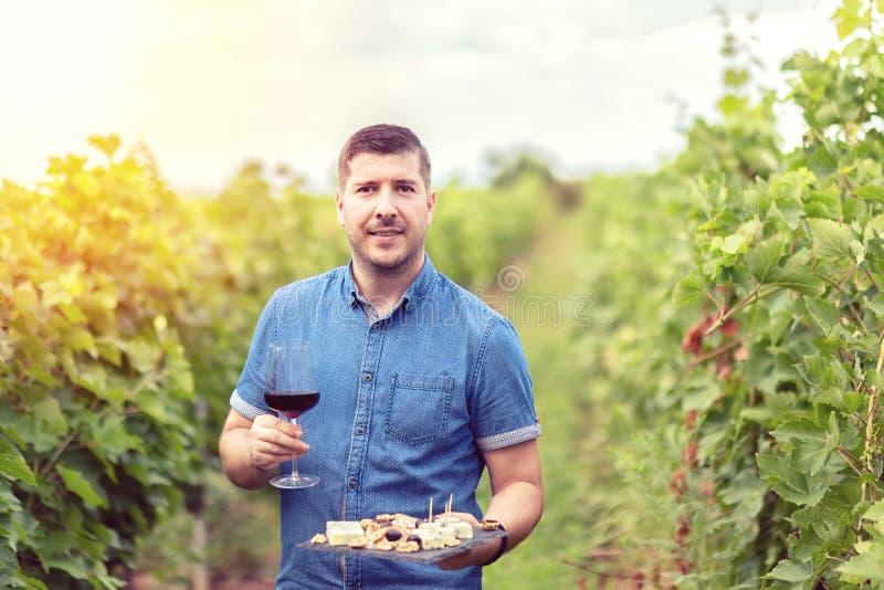 Winemaker bem sucedido feliz no vidro da terra arrendada de vinhedo do vinho tinto e da placa com porcas e uvas do queijo para a  fotografia de stock