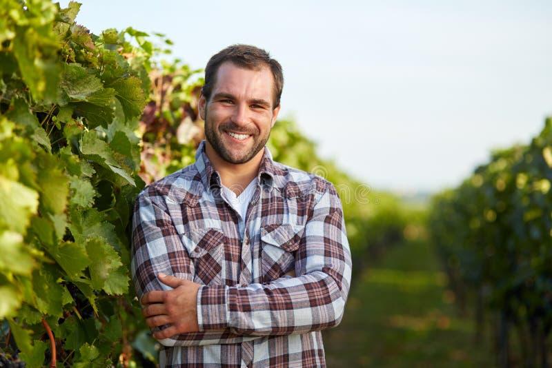 Winemaker dans le vignoble photographie stock
