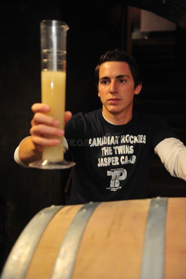 Winemaker die nieuwe wijn testen royalty-vrije stock afbeelding