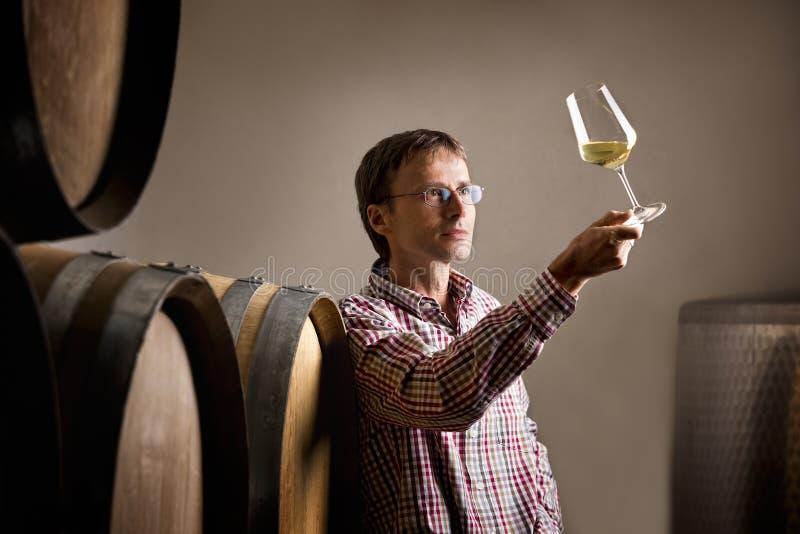 Winemaker que analiza el vino blanco en sótano. imágenes de archivo libres de regalías