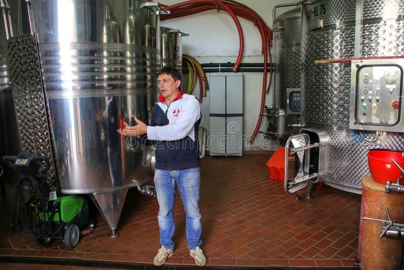 Winemaker se tenant à côté des navires de fermentation d'acier inoxydable photos stock