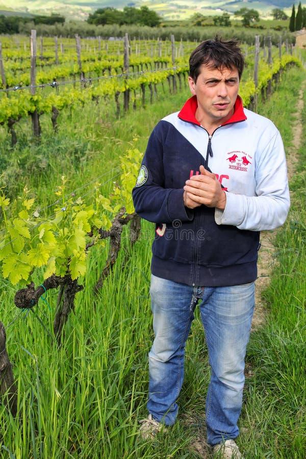 Winemaker se tenant dans son vignoble près de Montalcino photographie stock