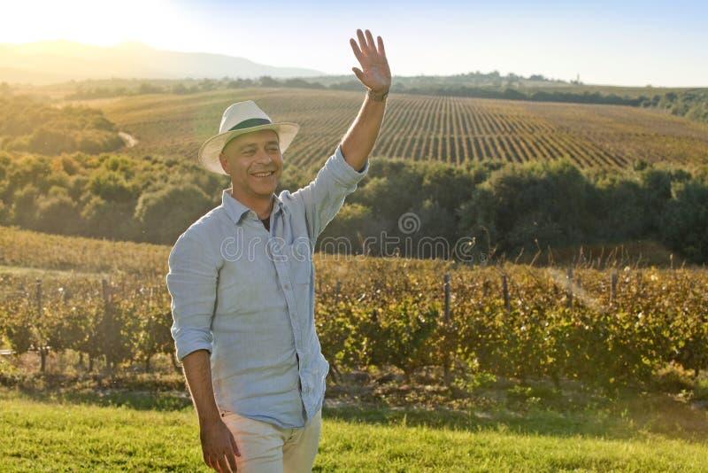 Winemaker uśmiecha się rękę przed zmierzchem i macha przy gronowymi jardami zdjęcia royalty free
