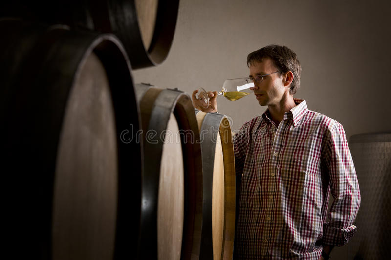 Download Winemaker W Lochu Target619_0_ Biały Winie W Szkle. Fotografia Royalty Free - Obraz: 26700757