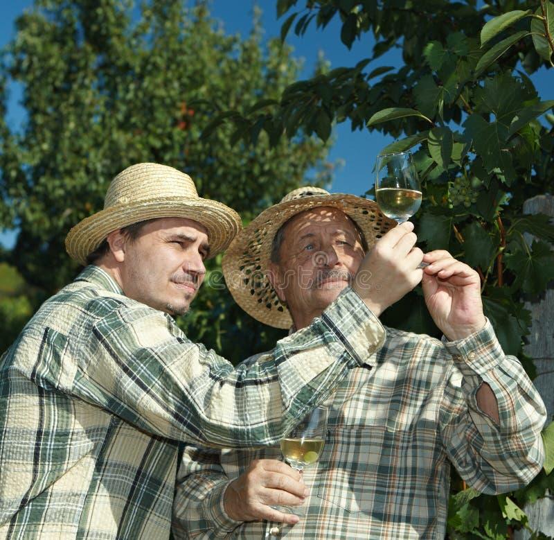 Winemakers que prueban el vino fotografía de archivo