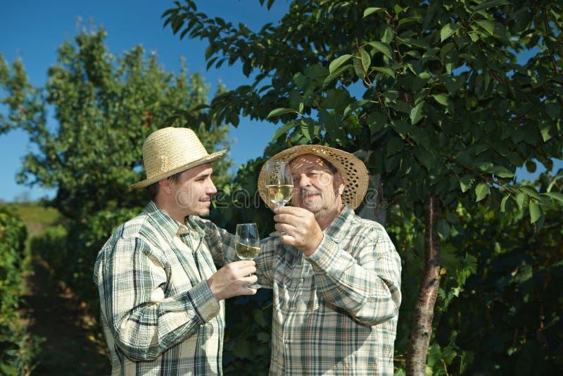 Winemakers que testam o vinho imagem de stock royalty free