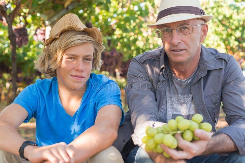 Winemakersvader en zoon in wijngaard stock foto