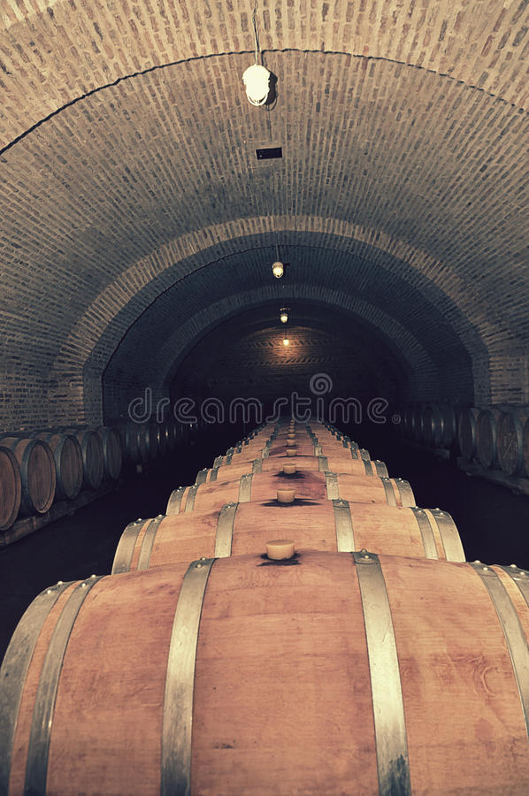 winery fotografia stock