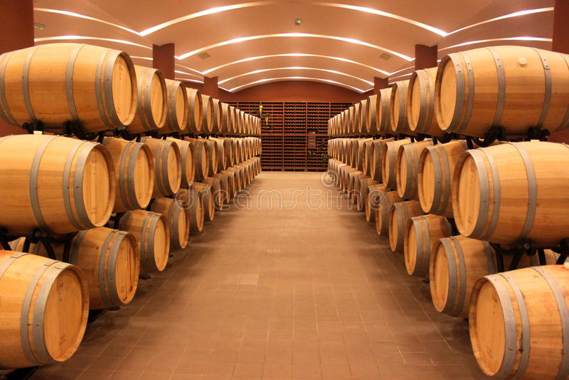 Winery barrels royalty free stock photos